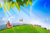 Lohas, Environmental Conservation, Digitally generated image of green leaves, butterflies and sunshine