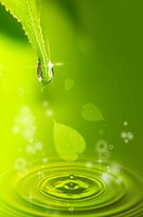 Lohas, Environmental Conservation, Digitally generated image of green leaf and drops on water surface