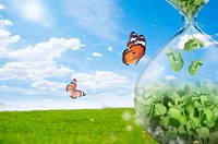 Lohas, Environmental Conservation, Digitally generated image of seedlings, butterflies, grass and blue sky