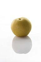 Dangshan Pear, Pear