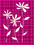 White flowers on a contemporary pink and purple pattern background