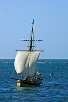 CRUISE ON THE RENARD, REPLICA OF ROBERT SURCOUF'S SHIP, SAINT_MALO, ILLE_ET_VILAINE 35, FRANCE