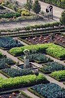 THE GARDENS, ENGLISH STYLE PARK, KITCHEN GARDEN, CHATEAU DE VILLANDRY, INDRE_ET_LOIRE 37, FRANCE