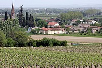 THE VINEYARDS AND VILLAGE OF GAILLAC, TARN 81, FRANCE