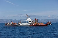 Tourists at Whale watching Tour, Azores, Atlantic Ocean, Portugal