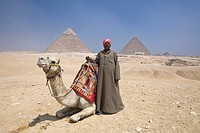 Camel Driver in Front of Pyramid of Gizeh, Cairo, Egypt
