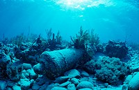 Wreck diving cannon, Yucatan Caribbean Sea, Mexico