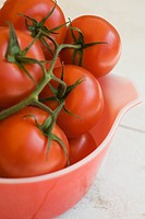 Ripe vine tomatoes in bowl