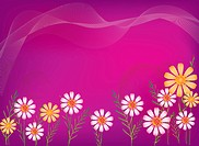 Illustration and painting of beautiful flowers in purple background