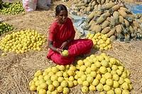 Fruit and Vegetable market, Bangalore, Southern Karnataka, India