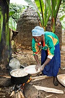 Dorze in the Guge mountains of Ethiopia, preparation of food dough and bread called Kotcho from the stem of a cooking banana Enset, Ensete, musa parad...