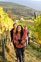 couple, two, hiking, vineyard, Neustift, close to Brixen, South Tyrol, Italy,