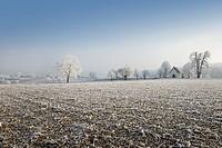 Germany, Baden_Wuerttemberg, Walzbachtal, Joehlingen, chapel, Mariahilf, winter, hoarfrost,