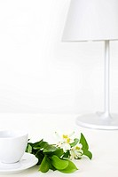 teacup, flower and desk lamp