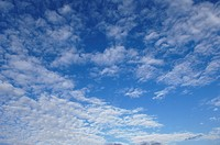 Skyscape of puffy clouds on a blue sky.