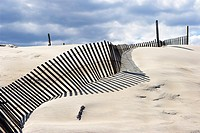 Sand fences. Outer Banks. North Carolina. USA