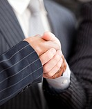 Handshake between two businessmen in the office