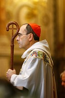 Cardinal Philippe Barbarin, Lyon, Rhone, France, Europe