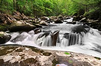 Beautiful waterfall in Great Smoky Mountains National Park, on the border of North Carolina and Tennessee