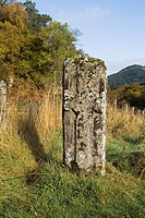 Priests Stone LOCH FASKALLY PERTHSHIRE Celtic cross slab