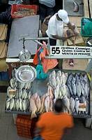 Panama, Panama City, El Mercado del Mariscos, Fish Market, Fish Vendor, Casco Viejo