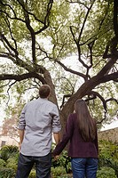 Couple holding hands and looking at tree