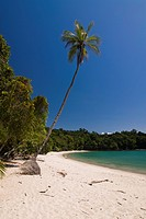 Beach of Manuel Antonio National park