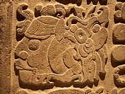 Jeroglífico maya. Museo Nacional de Antropologia. Ciudad de Mexico