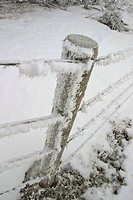 saskatchewan, frostcovered, scenic, fence, barbedwire, hoar