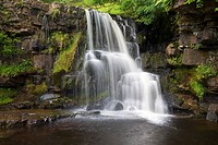 East Gill Force Keld Swaledale Yorkshire Dales England