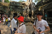 person, prohm, tourists, cambodia, people