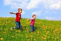 boy and girl running through field of Dandelions,Zuercher Oberland, Zuerich, Switzerland