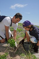 Florida, Miami Beach, Beach View Park, Surfrider Foundation, Coastal Dune Restoration, planting, volunteer, student, man, boy, father, son, family, en...