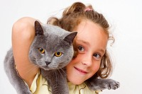 Girl, 6 years, with blue British Shorthair Cat