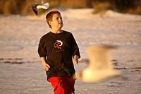 usa, chasing, florida, scenic, gulls, boy
