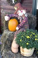 pumpkin, mannequin, shop, front, sitting, halloween