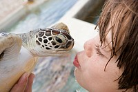 Detail of a boy kissing a turtle
