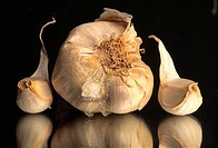 garlic, hr 736, details, food