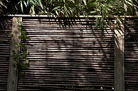 japan engakuji zen temple kamakura bamboo screen