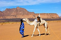 Tuareg nomad leading a white Mehari dromedary witha traditional Tuareg saddle in the desert, Sahara desert, Libya