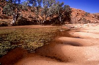 AUSTRALIA, Northern Territory, West Macdonnel National Park  The natural curves of a billabong in the heart of the australian outback