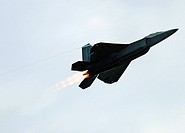 An F-22 Raptor performs a fly-by during the 4th annual Freedom's Call Tattoo June 27 on the grounds of the National Museum of the U S  Air Force in Da...