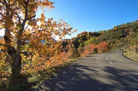 road in a beautiful autumn landscape in Tena valley, Pyrenees, Huesca, Aragon, Spain