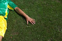 Brazilian kicker lying on grass