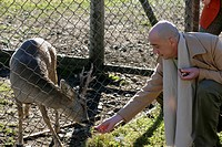 Man feeding a deer