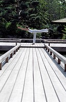 Woman doing a Yoga-Exercise on a wooden Footbridge - Trees - Nature - Harmony (thumbnail)