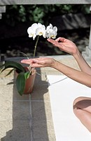 Woman putting Thumb and Forefinger together _ Yoga _ Garden