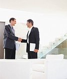 Successful happy business man shaking hands after a deal