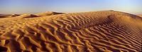TUNISIA, Zaafrane, Sahara Desert  Morning light illuminates the patterns of the sand dunes of the great erg oriental