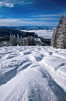 Powder snow covering moguls at Steamboat ski area in Colorado, USA